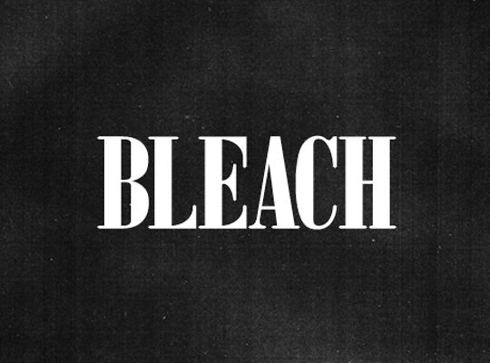16-08-391087-Bleach-BleachBible-CP_SPS33-01
